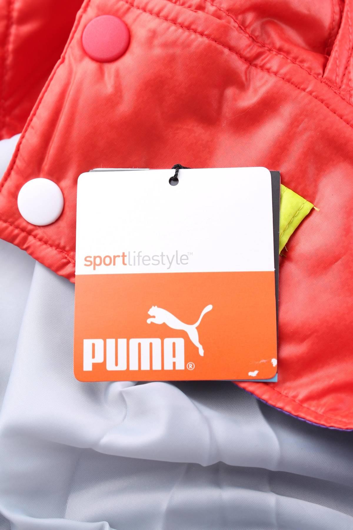 Пола Puma3