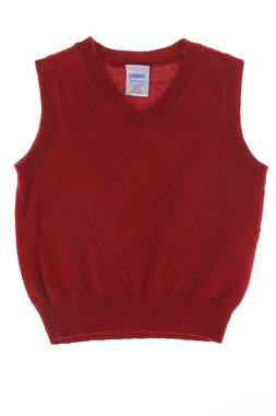 Детски пуловер Gymboree2
